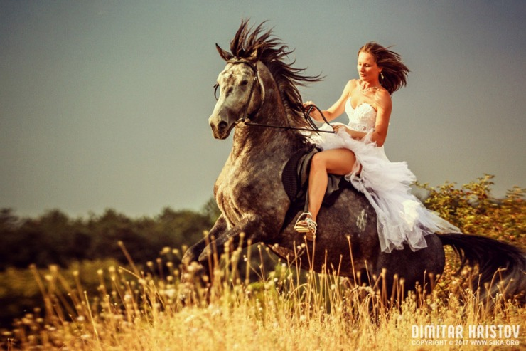woman-riding-wild-horse_by_54ka