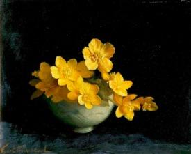 Yellow Flowers against Black