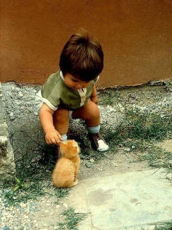 He Likes Kitty