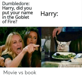 dumbledore-harry-did-you-put-your-name-in-the-goblet-61537116
