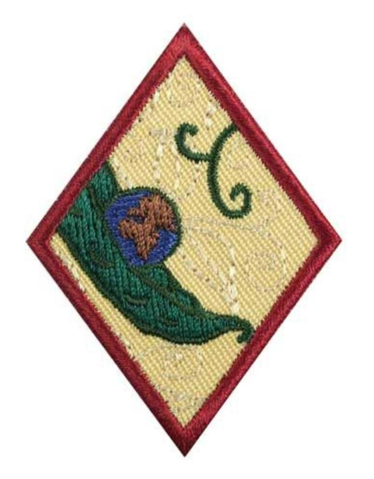 girl-scouts-of-the-usa-cadette-new-cuisines-badge